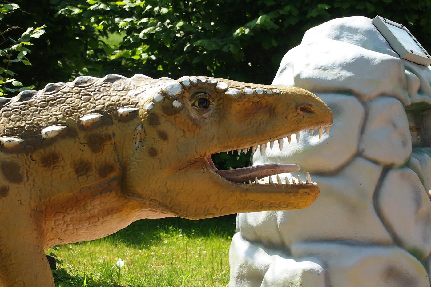 Podróż grupy 6C w czasy dinozaurów